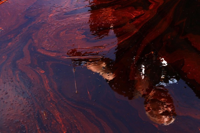BLIND BAY, LA - MAY 26: Reporter Anderson Cooper is reflected in oil filled water during a tour of areas where oil has come ashore May 26, 2010 in Blind Bay, Louisiana. As BP prepares to try and stop the oil leak with a 'top kill' method, the Louisiana coastline is reeling from the effects of the continued gusher. (Photo by Win McNamee/Getty Images) *** Local Caption *** Anderson Cooper