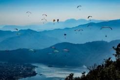Paragliding - Harald
