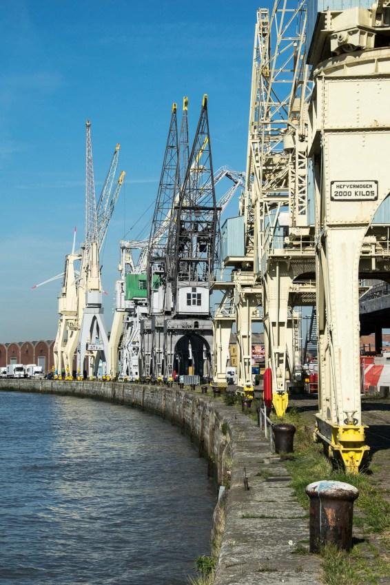 Helmut-Antwerpen-DSC_9279