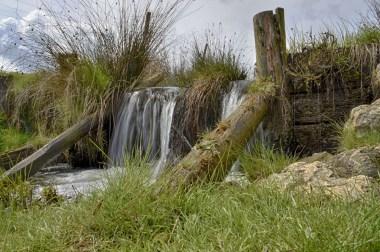 Hochwildschutzpark Rheinböllen - Wasserlauf / Watte @Stefan Jankowski