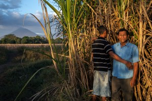 Walter Arsenio Rivera, 29, poses with his father, Antonio Arsenio Rivera, 58, in the cane fields of Chichigalpa, Nicaragua on Jan. 6, 2013. Both men suffer from chronic kidney disease. La Isla is dedicated to fighting the epidemic of kidney disease in Chichigalpa, Nicaragua.They work with health officials and researchers to provide better medical treatment for the sick and to study the causes of the epidemic. They support and organize workers and their families through education programs, health initiatives, and economic development projects. And we are committed to breaking the silence that shrouds this epidemic.