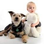 Fotografie zvířat a dětí