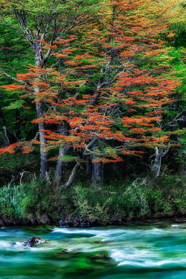 Fotoexplorer-Marcio-Cabral-ARG-e-CHI-Patagonia-023