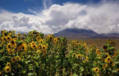 Fotoexplorer-Marcio-Cabral-CHI-Deserto-do-Atacama-027