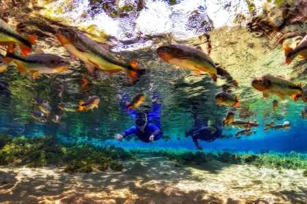 Fotoexplorer-Marcio-Cabral-BRA-MS-Bonito-Jardim-036