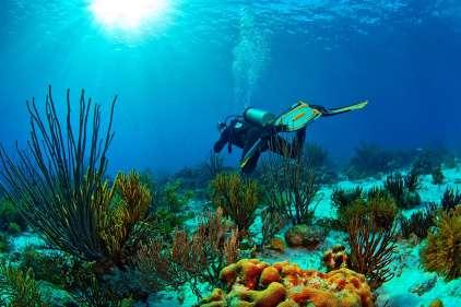 Fotoexplorer-Marcio-Cabral-HOL-Bonaire-011