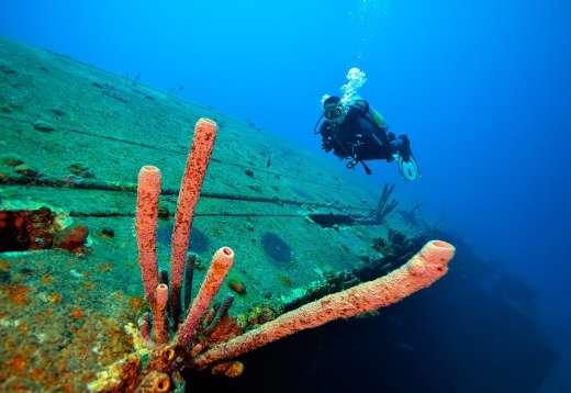 Fotoexplorer-Marcio-Cabral-HOL-Bonaire-014