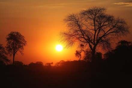 fotoexplorer_marcio_cabral_pantanal_06
