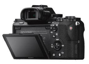 Sony A7 II + 24-70mm F/4.0 ZA OSS ZEISS-4273