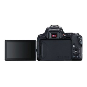 Canon EOS 250D zwart + 18-55mm iS STM COMPACT + EF 50mm F/1.8 STM-6382