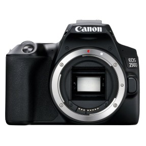 Canon EOS 250D zwart + 18-55mm iS STM COMPACT + EF 50mm F/1.8 STM-6385