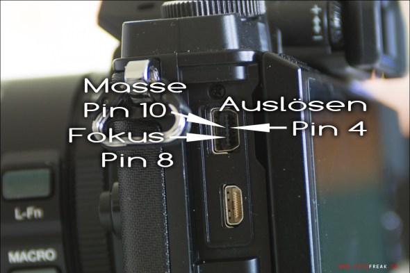 Pinbelegung Olympus OM-D E-M5 USB
