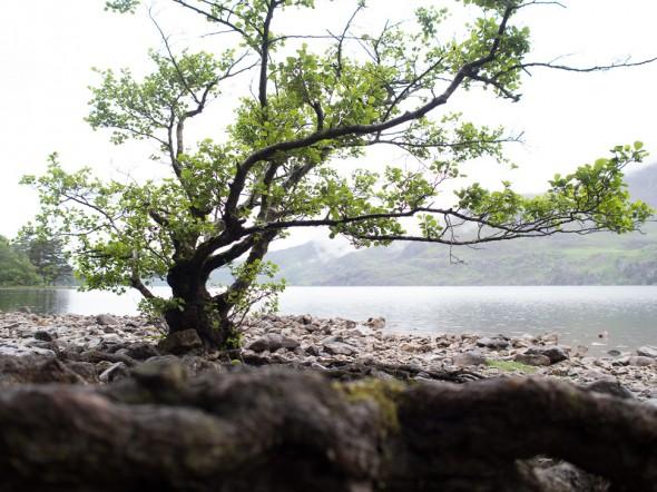 Loch Maree - Originalaufnahme