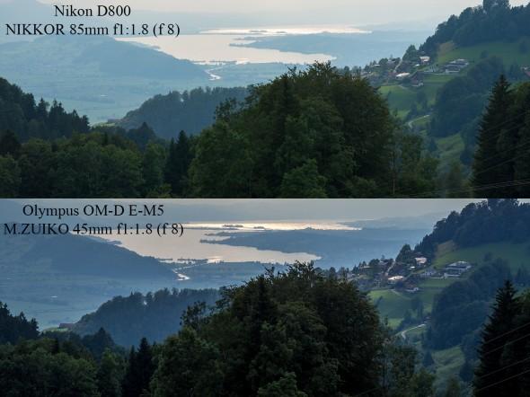 Nikon D800 vs. Olympus OM-D E-M5