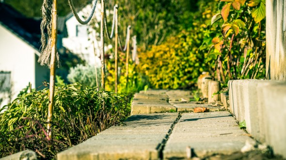 Garten Ausschnitte