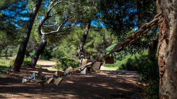 Kurioses auf Mallorca
