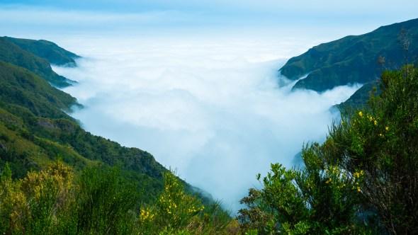 Ferien auf Madeira - Ein paar Impressionen