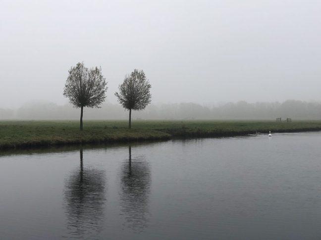 Schatzoeken: Polderpark Cronesteijn