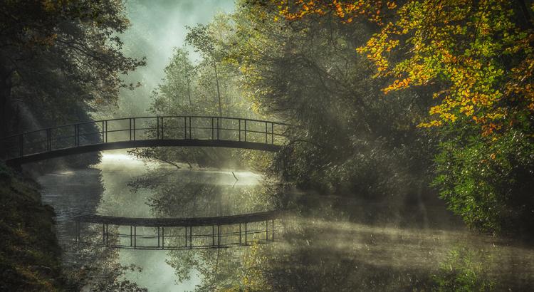 Reflecties bij Landgoed de Horsten