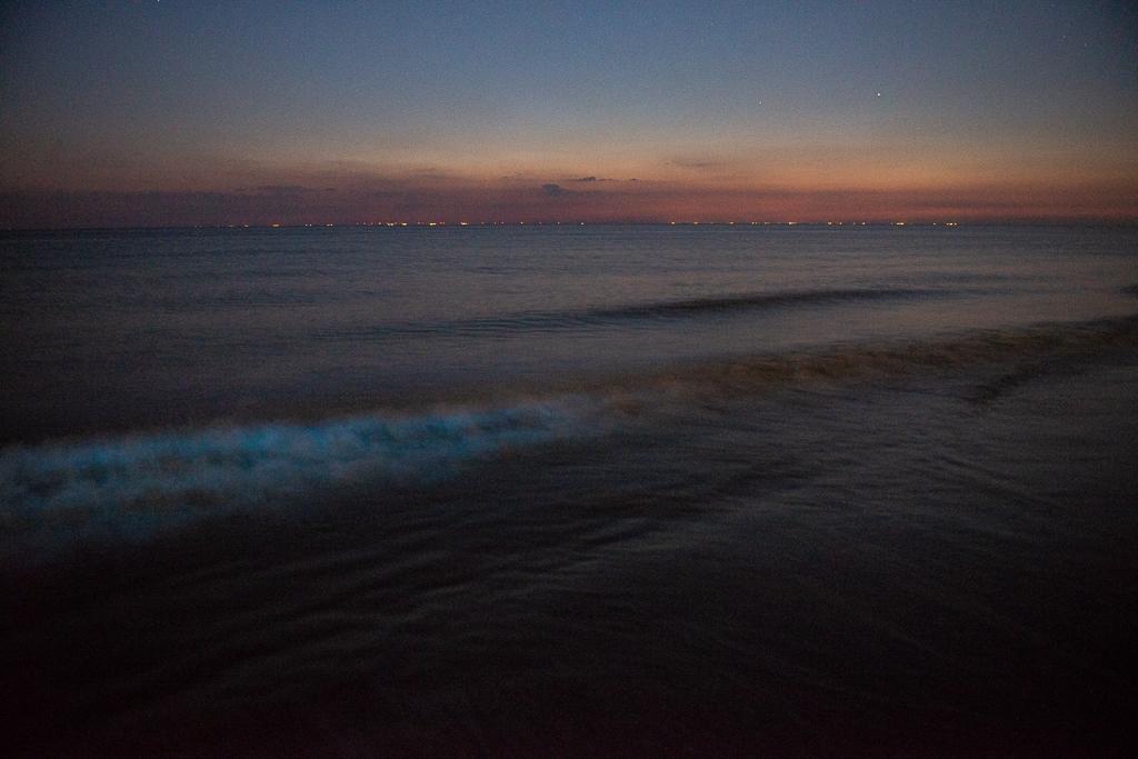 een golf licht op door zeevonk