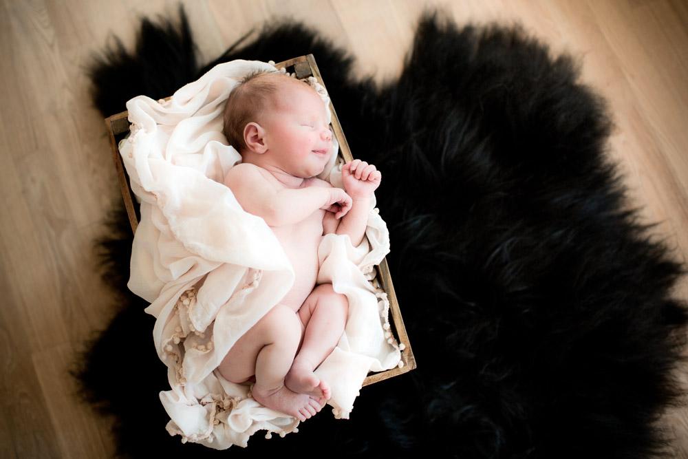 Little angels newborn foto