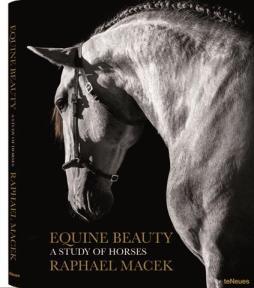 equine_beauty_raphael_macek