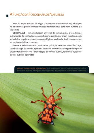 livro-de-fotografia-natureza-brasileira-018