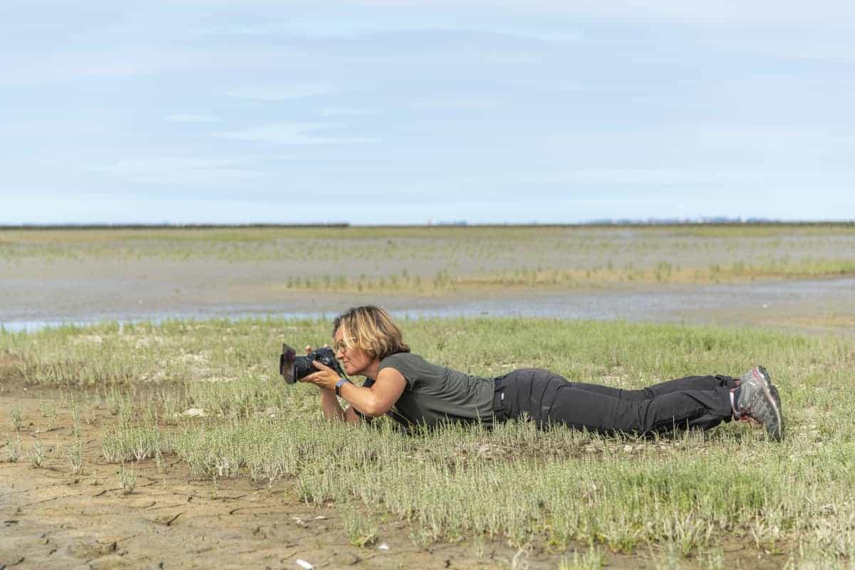 Fotoweekend Groninger Waddenkust - Marphy in de Emmapolder