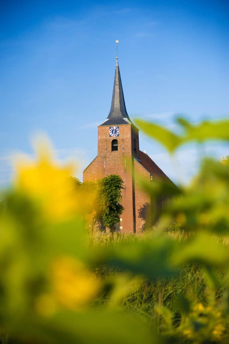 Kerkje Heveskes in de zonnebloemen Fotografiereis Groninger Waddenkust