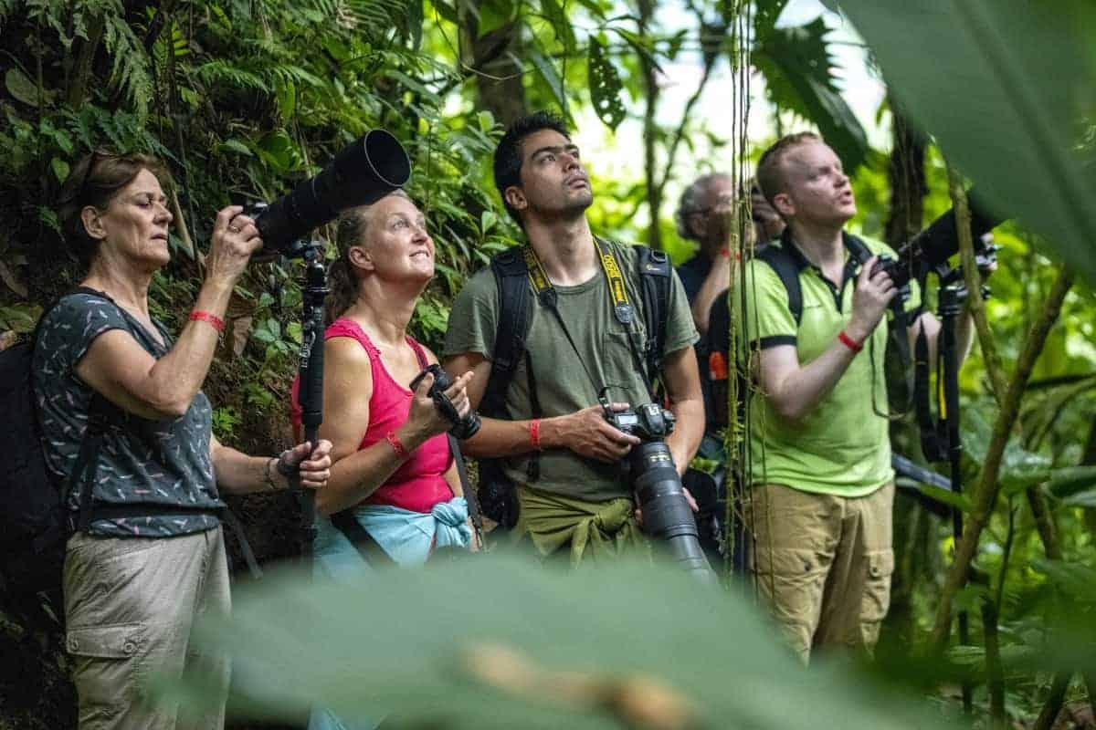 In de jungle tijdens de fotografiereis Costa Rica