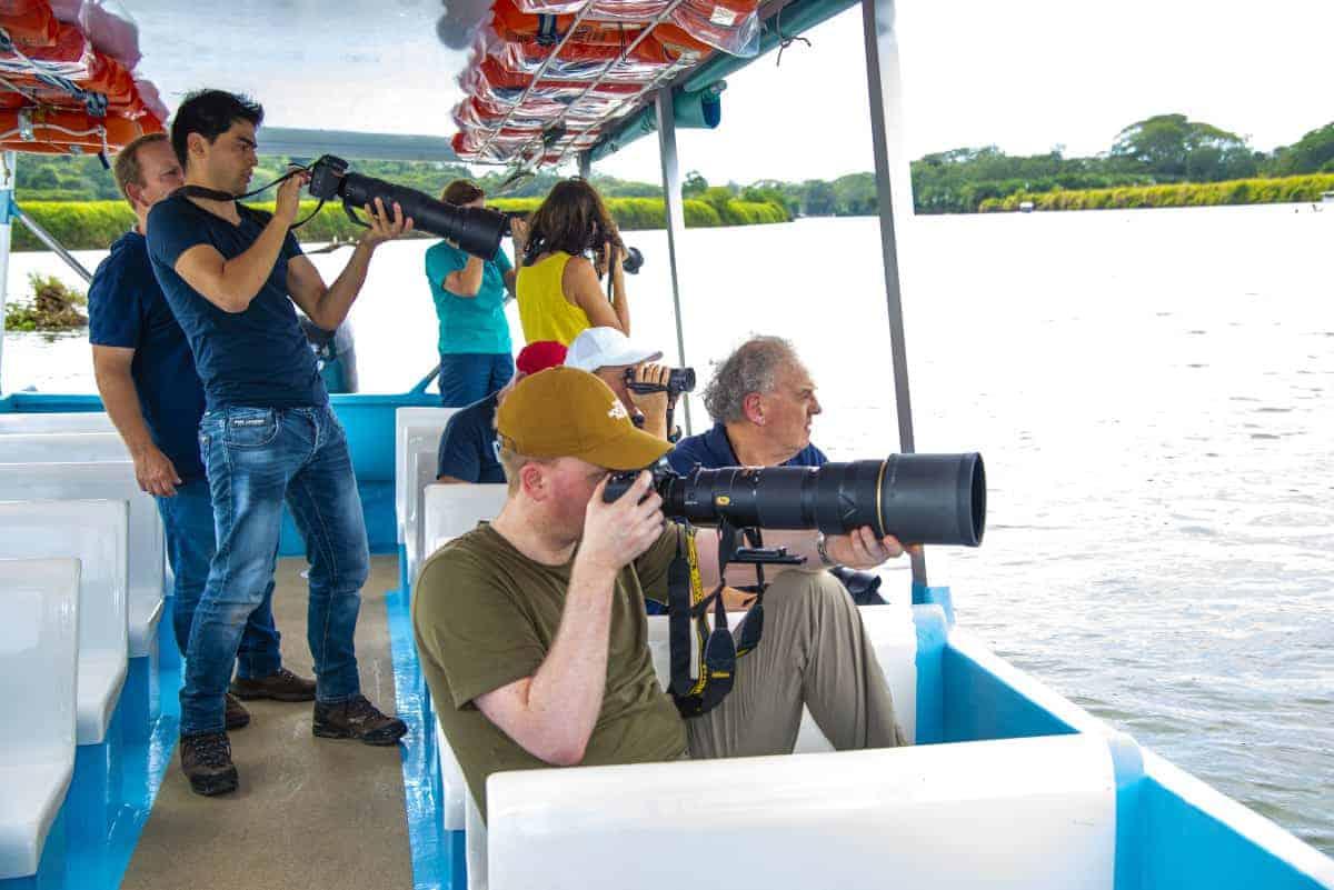 Krokodillen spotten op de boot tijdens de fotoreis Costa Rica