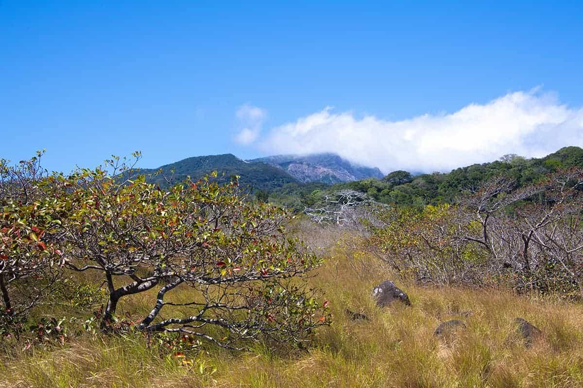 Fotoreizen Costa Rica Rincon de la Vieja
