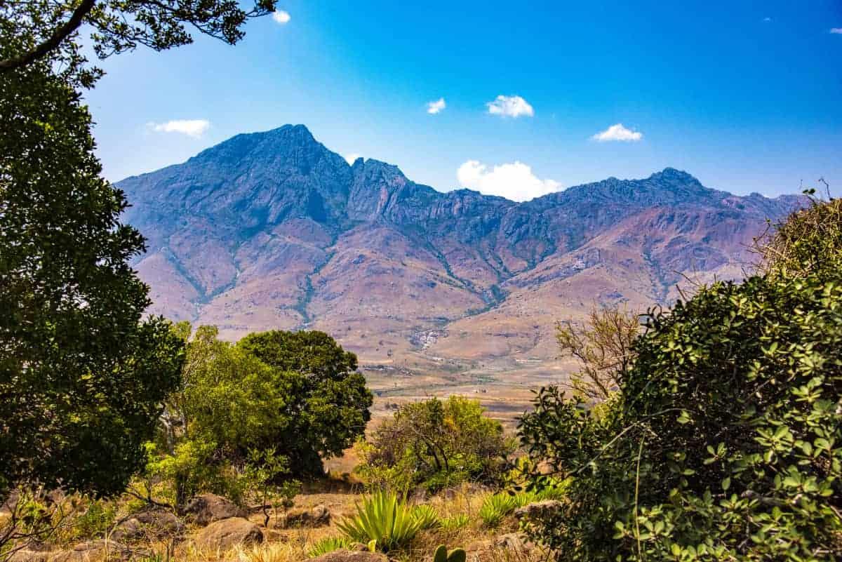 Fotoreis Madagaskar Ranomafana schutdier
