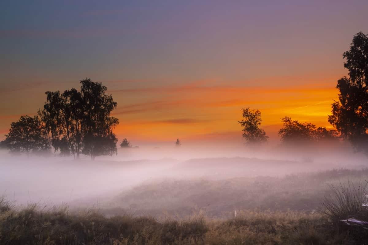 Fotoweekend Drenthe Balloerveld rode zonsopgang | Fotografie-reizen - Fotoreizen