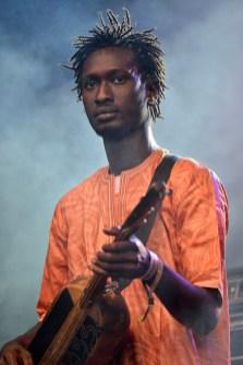 Bassekou-Koyate-and-Ngoni-Ba_03