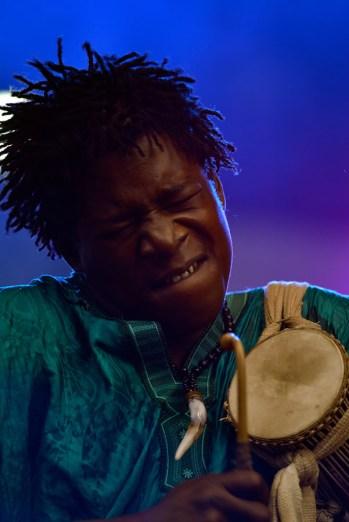Bassekou-Koyate-and-Ngoni-Ba_04