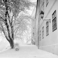 ZG_snijeg_2014_06