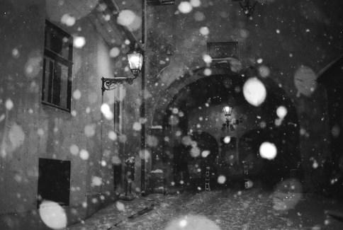 ZG_snijeg_012