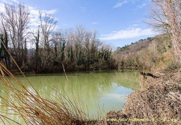 Riserva Naturale Alto Merse