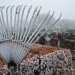 Rijp Algemene Begraafplaats Aalsmeer