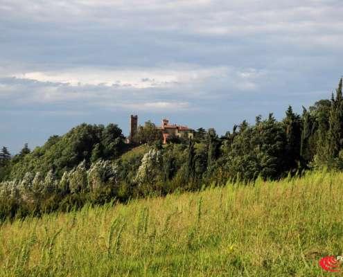 Turismo Valsamoggia: Abbazia di Santa Maria Assunta