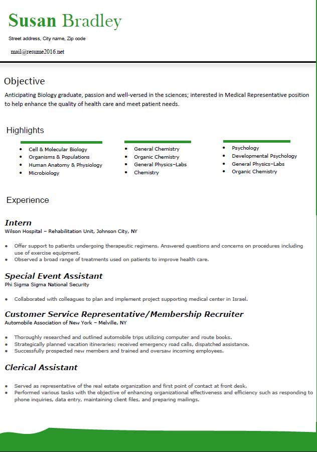 Resume In Japanese Format