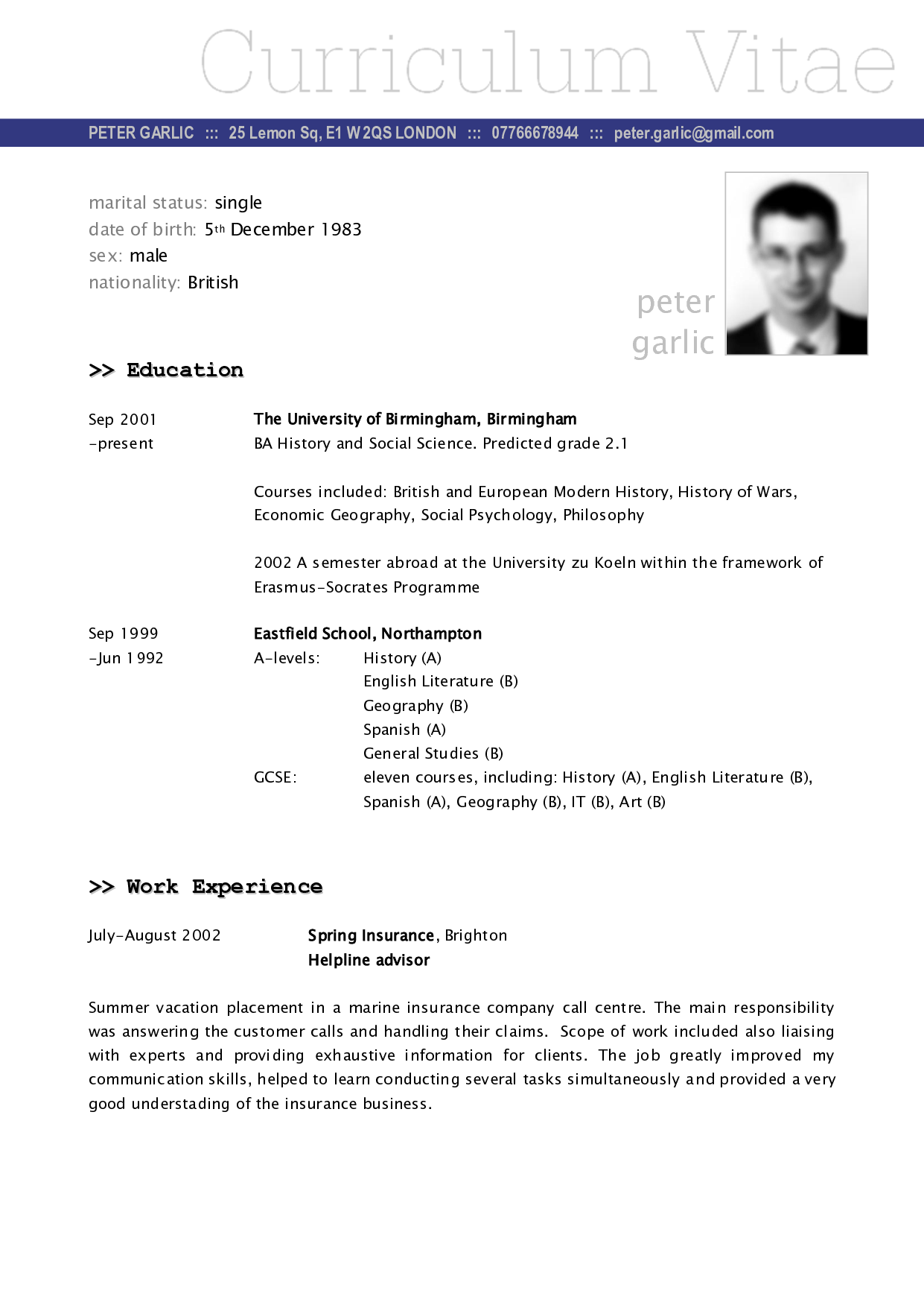german resume sample template