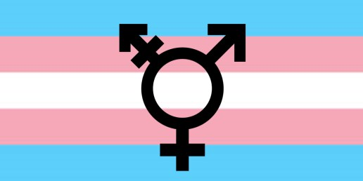 Trans women should be empowered just as much as cisgender women.