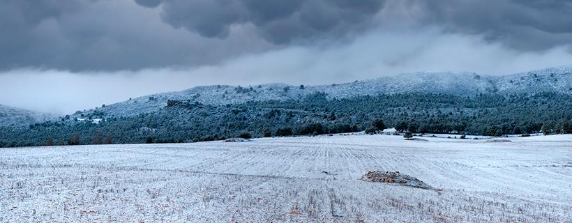 Invierno en el Sabinar
