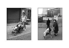 Cani e umani di Davide Mengacci