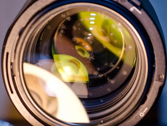Lens Fungus (Nikon 70-200 2.8 VR)