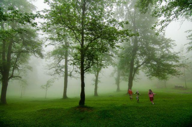 Orman ve İnsan Konulu 2. Ulusal Fotoğraf Yarışması Sonuçlandı