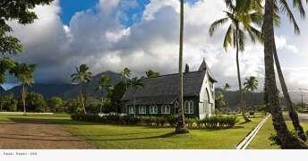 travel-viaje-siqui-fotografia-hawai-palmeras