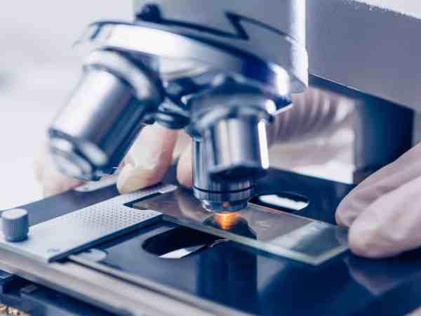 Mikroskop Kamera Träger
